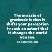 quotes-gratitude-perception-robert-holden-480x480